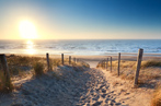 #62417402  path to sand beach in North sea © Olha Rohulya - Fotolia